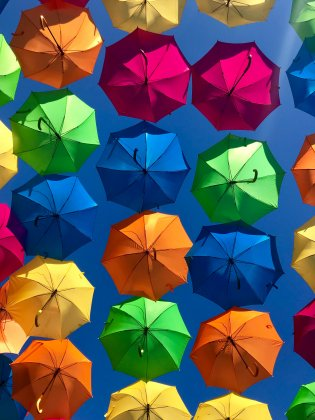 Umbrella Photo by XiaoXiao Sun on Unsplash
